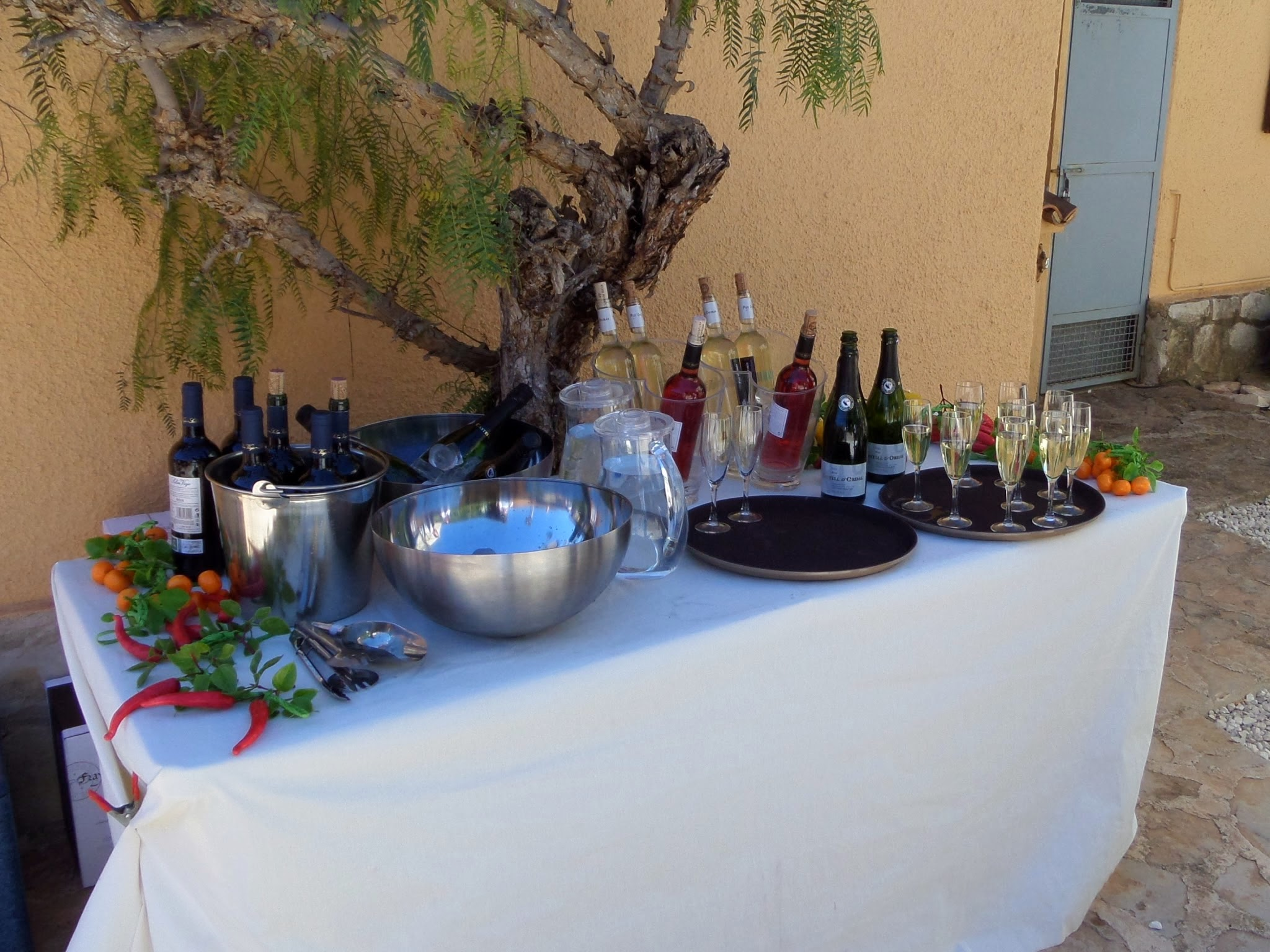 Advantages of Party Catering.